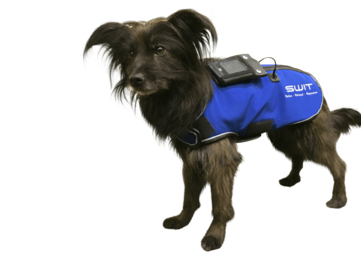 switplus-hund-jacket