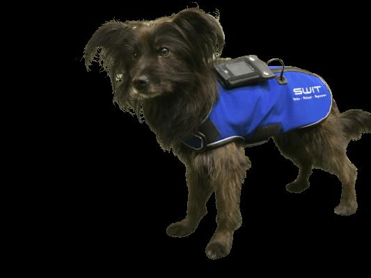 Switplus-Dog-jacket